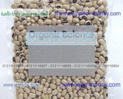تعبئة و تغليف البذور في كيس بلاستيكي من شركة مهندس منسي ام توباك لمستلزمات التعبئة والتغليف